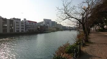 中州1.jpg